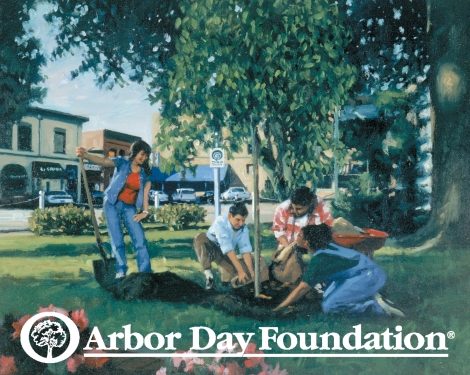 Credit: http://www.arborday.org/